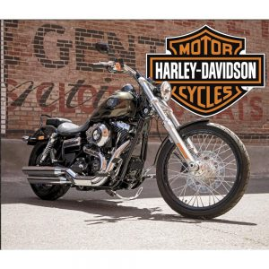 Harley-Davidson moves some productions out of U.S., Stockwinners